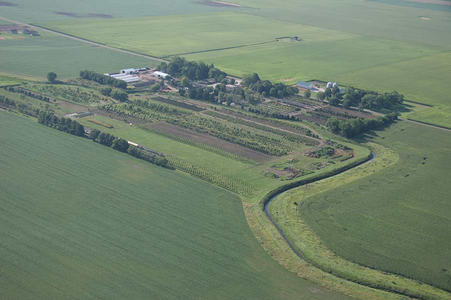 Country Arbors Nursery Aerial View