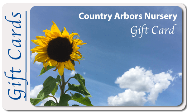Country Arbors Gift Card